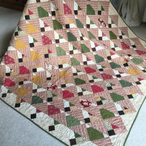 Blueberry Delight Variation Quilt